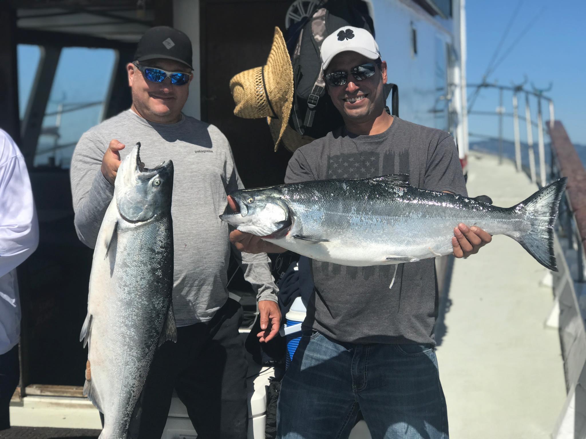 salmon-shark-sturgeon